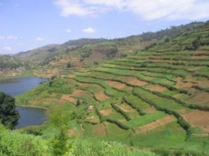 Most of the hills around the lake are farmed and homes can be found on the steep slopes.